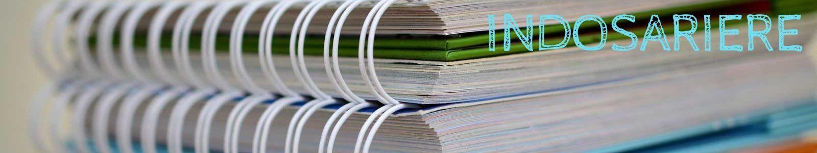 Serviceii de indosariere documente cu spira metalica sau de plastic diverse culori